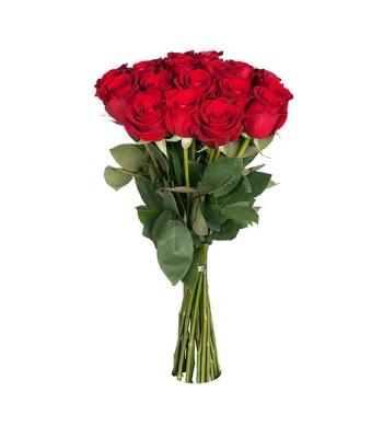 Punased roosid: 60cm (min kogus 15tk)