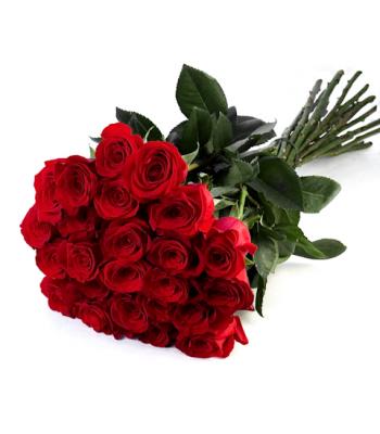 25 roosi: punane