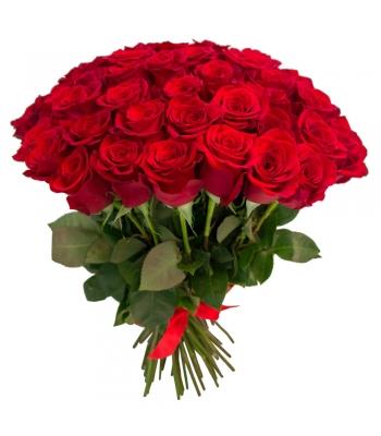 35 punast roosi: 40cm