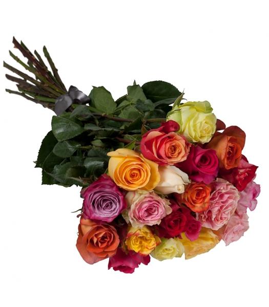 Värvilised roosid