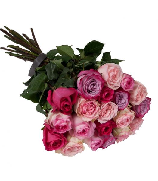 Roosakirjud roosid