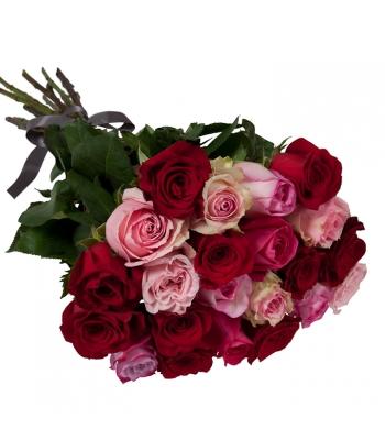 Punasekirju roosikimp