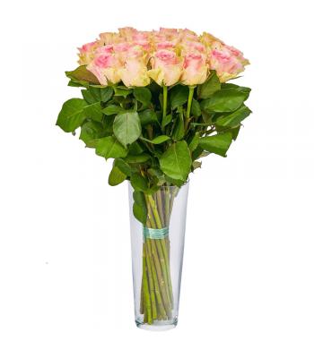Heleroosad roosid: 50cm (min kogus 20tk)