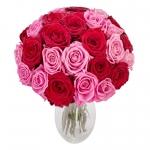 Ümarad roosikimbud