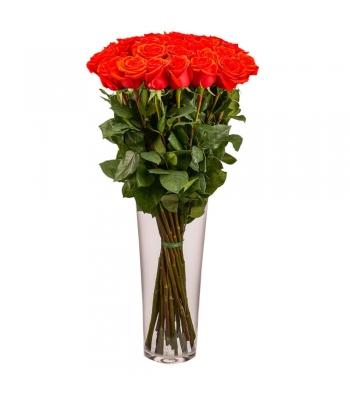 Punased roosid: 70-80cm (min kogus 15tk)