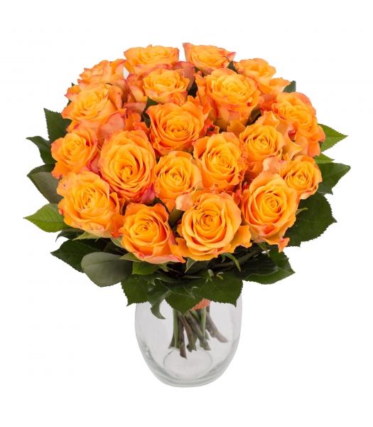 Oranž roosikimp
