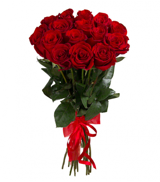 15 punast roosi