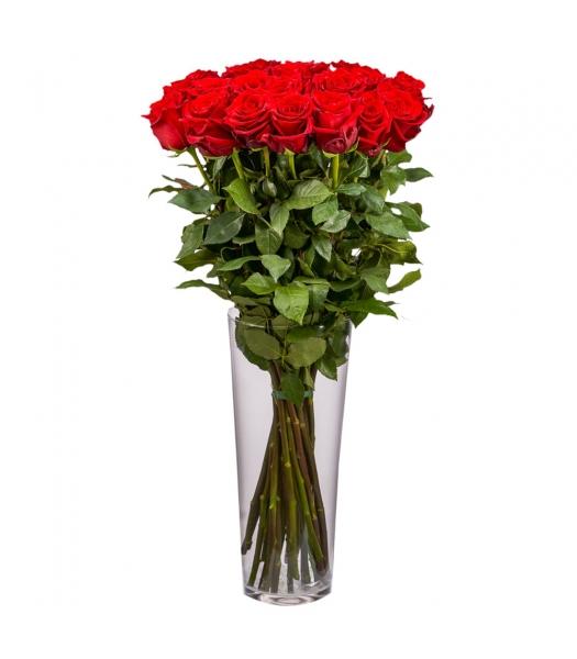 Punased roosid: 80cm (min kogus 15tk)