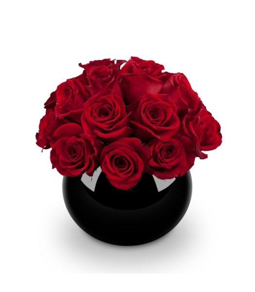 Punane roosiseade