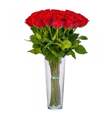 Punased roosid: 50cm (min kogus 15tk)