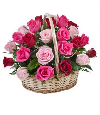 Roosa roosikorv