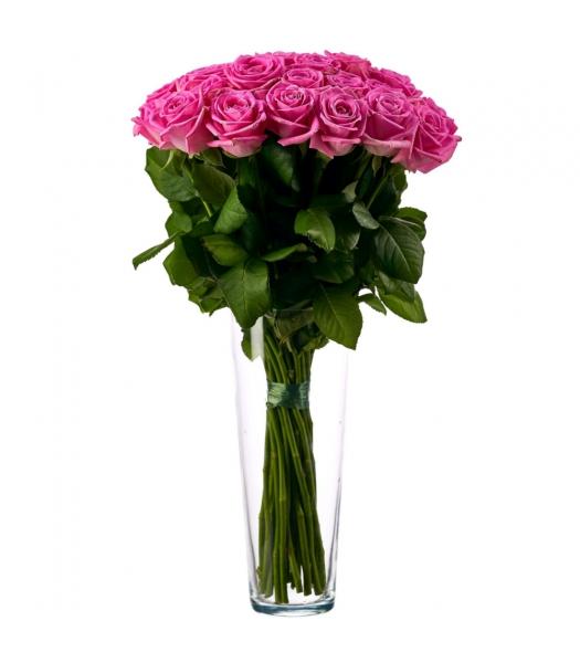 Roosad roosid: 50-60cm (mis kogus 15tk)