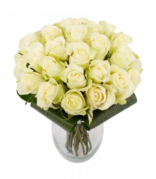 Valge roosikimp