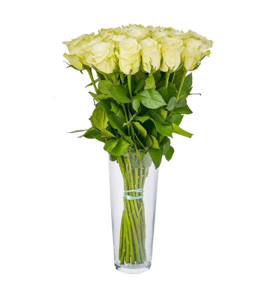 Valged roosid: 50cm (min kogus 20tk)
